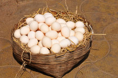 Egg basket in the sun. Egg basket at a farmers market in late afternoon sun Royalty Free Stock Photos