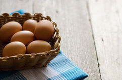 Egg in the basket Stock Images