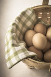 Egg Basket with Vintage Effect. A basket of gathered eggs lined with green and white checked gingham cotton cloth.  Partly desaturated and vignetted for retro Stock Images