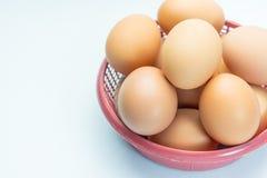 Egg in basket on white background. Eggs in basket on white background Royalty Free Stock Images