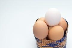 Egg in basket on white background and single white egg. Eggs in basket on white background and single white egg Stock Photos
