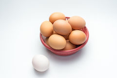 Egg in basket on white background and single white egg. Eggs in basket on white background and single white egg Royalty Free Stock Photos