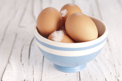 Egg in the bawl Stock Photo