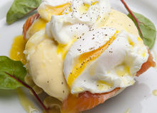 Egg Benedict Royalty Free Stock Images