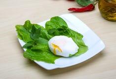 Egg benedict Stock Photos