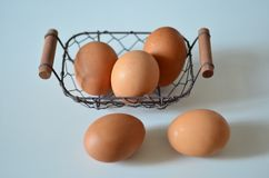 The egg. Is a best food and high protien Royalty Free Stock Photography