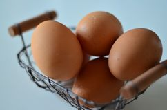 The egg. Is a best food and high protien Royalty Free Stock Photos