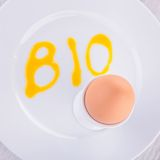 Egg bio Stock Image