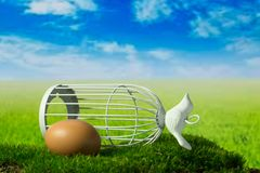 Egg and birdcage on the green fantasy meadow. Egg and birdcage can be symbols of freedom Royalty Free Stock Photography