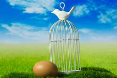 Egg and birdcage on the green fantasy meadow. Egg and birdcage can be symbols of freedom Stock Photography