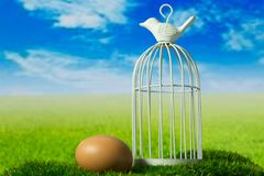Egg and birdcage on the green fantasy meadow. Egg and birdcage can be symbols of freedom Stock Image