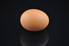 Egg on Black Stock Photos