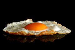 Egg on black Stock Images