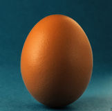 Egg blue backround Royalty Free Stock Photo