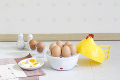 Egg boiler machine tool a home appliance kitchenware Stock Image
