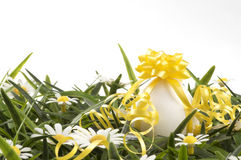 An egg with a bow Stock Photography