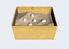 Egg box Stock Photo