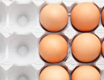 Egg in box Royalty Free Stock Photography