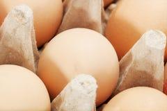 Egg box. Isolated on white background Royalty Free Stock Image