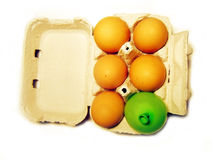 Egg box. With one different Royalty Free Stock Photo