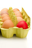 Egg box, differ one. Royalty Free Stock Photo