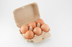 Egg box - eggs in an egg carton on white background. Egg box - eggs in an egg carton on white background Royalty Free Stock Images