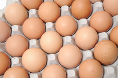 Egg box and eggs Stock Image
