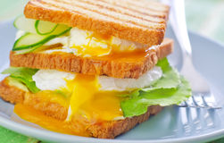 Egg with bread Stock Image