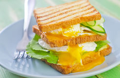 Egg with bread Royalty Free Stock Photo