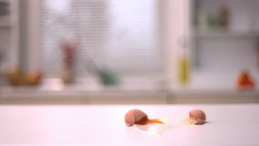 Egg breaking on kitchen counter stock footage
