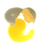 Egg broken. With yellow yolk Stock Images