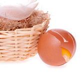 Egg broken on the background of nests Stock Photo