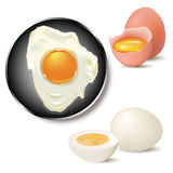 Egg. Broken, fried and boiled egg on white background. Vector illustration vector illustration