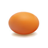 Egg Brown Royalty Free Stock Photography