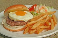 Egg Burger combo of fries and coleslaw. A feast for the eyes. An egg hamburger with french fries and coleslaw stock image