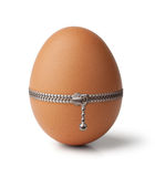 Egg, buttoned with a zipper Stock Photo