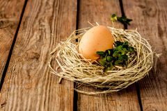Egg and buxus in a hay nest on vintage wood Royalty Free Stock Image