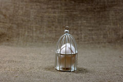 Egg in cage on dark green rough cotton texture art concept Royalty Free Stock Photography