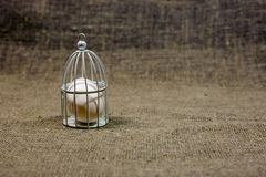 Egg in cage on dark green rough cotton texture concept Royalty Free Stock Images