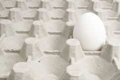 Egg. In a cardboard box Stock Illustration