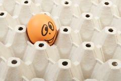 Egg in a cardboard box Stock Photos