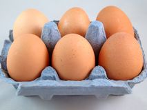 Egg Carton. Eggs in their blue box against grey background Royalty Free Stock Photo