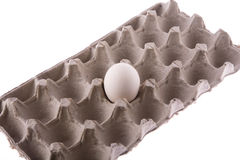 A egg in carton Stock Images