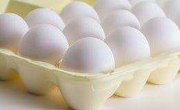 Egg Carton Stock Photos