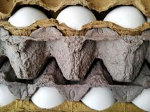 Egg Carton Royalty Free Stock Image