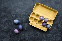 Egg carton with colored eggs Royalty Free Stock Photos