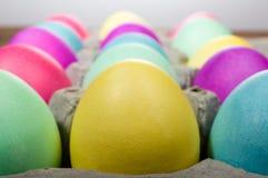 Egg carton of colorful dyed Easter eggs Stock Photos
