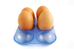 Egg carton with eggs on white background Royalty Free Stock Photo