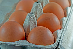 Egg carton with fresh brown eggs Royalty Free Stock Image