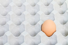 Egg in a carton package Royalty Free Stock Photography